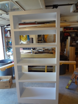 shelves-custom